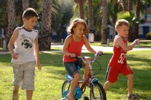 bicicleta campo
