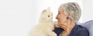 130115 senior pets